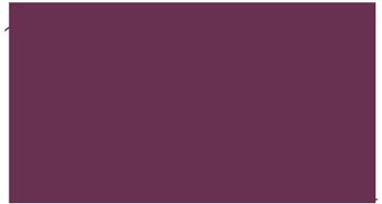 Bine´s Knipserei | Fotografie | Erfurt Logo